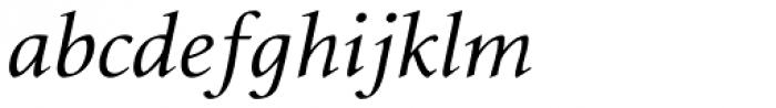 Envoy Display Italic Font LOWERCASE