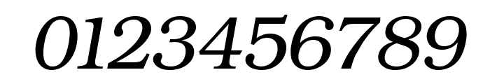 ER Bukinist 1251 Italic Font OTHER CHARS