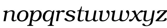 ER Bukinist 1251 Italic Font LOWERCASE