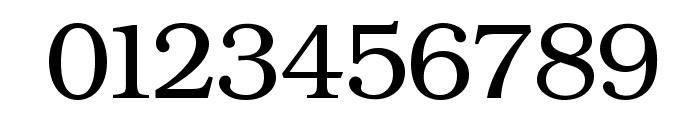 ER Bukinist 866 Font OTHER CHARS