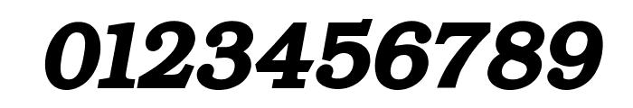 ER Bukinist KOI-8 Bold Italic Font OTHER CHARS
