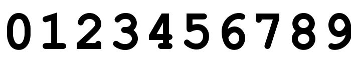 ER Kurier 1251 Bold Font OTHER CHARS