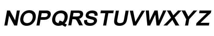 ER Univers KOI-8 Bold Italic Font UPPERCASE