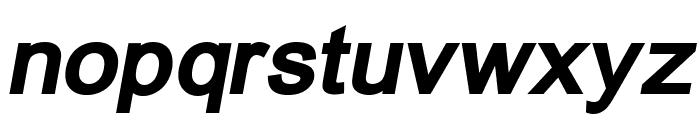 ER Univers KOI-8 Bold Italic Font LOWERCASE