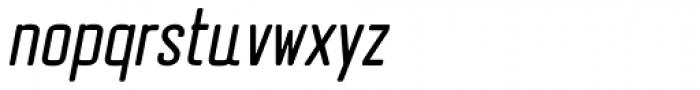 Erazm Light Italic Font LOWERCASE