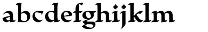 Escritura Bold Font LOWERCASE