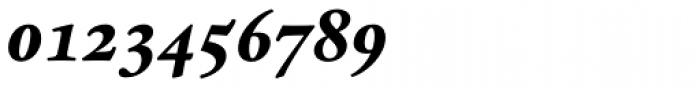 Espinosa Nova Bold Italic Font OTHER CHARS