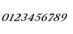 Eterea Handtooled Caps Italic Font OTHER CHARS