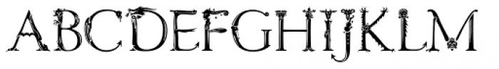 Etymonster Regular Font UPPERCASE