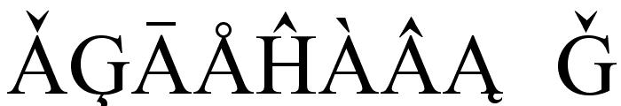European Serif Font OTHER CHARS