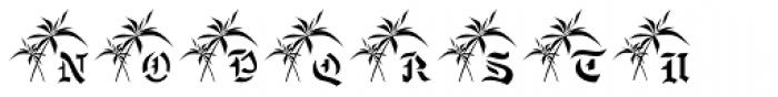 Eurasian Stencinitials JNL Font LOWERCASE