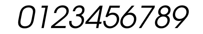 Evolventa Oblique Font OTHER CHARS