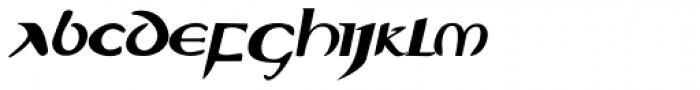 Evangeliaire Uncial Italic Font LOWERCASE