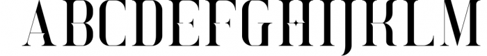 Exquisite - Serif Typeface 4 Styles 3 Font UPPERCASE