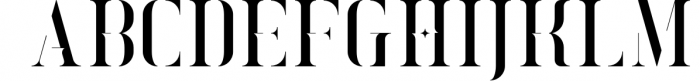 Exquisite - Serif Typeface|4 Styles Font LOWERCASE