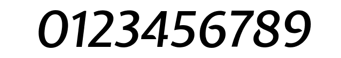 Expletus Sans Medium Italic Font OTHER CHARS