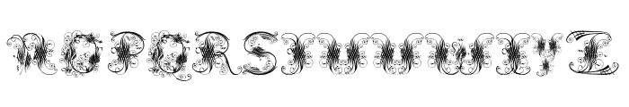 ExtravagantCapitals Font UPPERCASE