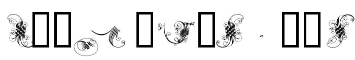 ExtravagantCapitals Font LOWERCASE