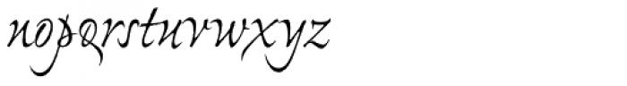 Ex Ponto Pro Font LOWERCASE