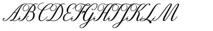 Excelsor Script 10 Font UPPERCASE