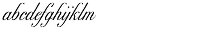Excelsor Script 10 Font LOWERCASE