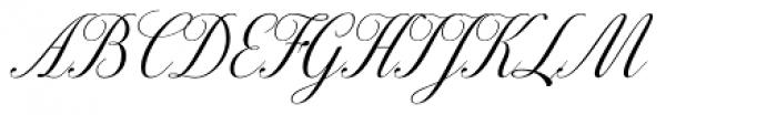 Excelsor Script 120 Font UPPERCASE