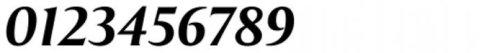 Exemplar Pro ExtraBold Italic Font OTHER CHARS