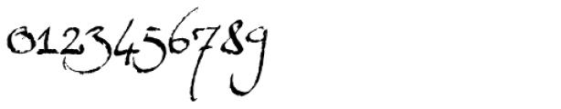 Expectation Std Regular Font OTHER CHARS