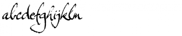 Expectation Std Regular Font LOWERCASE