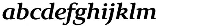 Exquisite Pro Medium Italic Font LOWERCASE