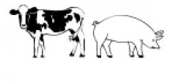 Farm Doodles Font LOWERCASE