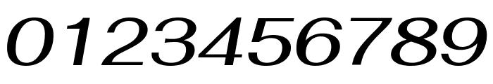 Fahkwang Medium Italic Font OTHER CHARS