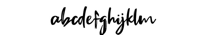Fake Serif Font LOWERCASE