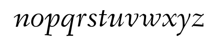 Fanwood TT Italic Font LOWERCASE