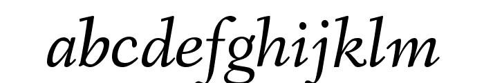 Fanwood Text Italic Font LOWERCASE