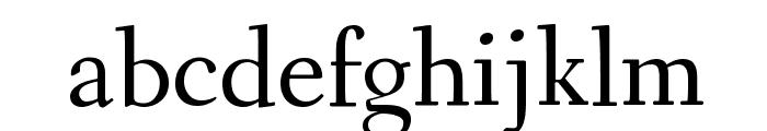 Fanwood Text Regular Font LOWERCASE