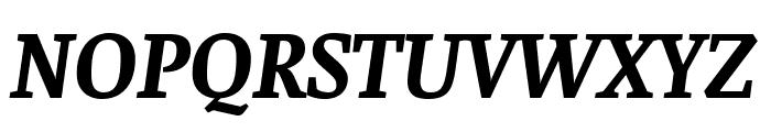 Faustina Bold Italic Font UPPERCASE