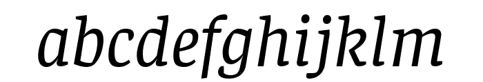 Faustina Italic Font LOWERCASE
