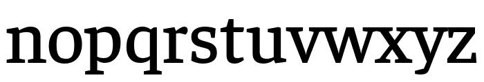 Faustina Medium Font LOWERCASE