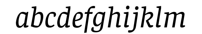 Faustina VF Beta Italic Font LOWERCASE