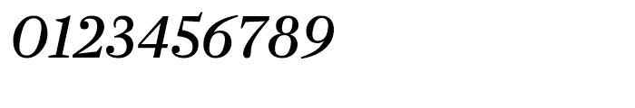 Farnham Display Regular Italic Font OTHER CHARS