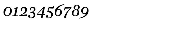 Farnham Text Regular Italic Font OTHER CHARS