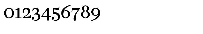Farnham Text Regular Font OTHER CHARS