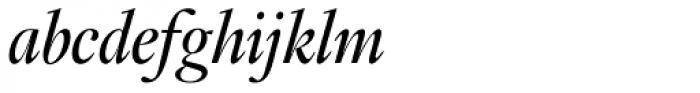 Fabrizio B Italic Font LOWERCASE
