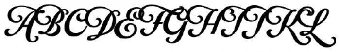 Fabulous Script Pro Font UPPERCASE