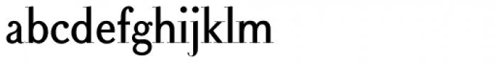 Falace Medium Font LOWERCASE