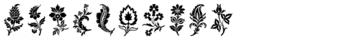 Fancy Flowers Font OTHER CHARS
