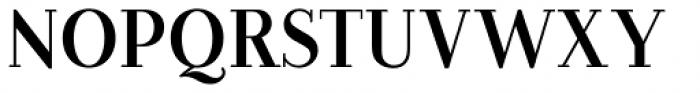 Farewell Angelina  Regular Serif Font UPPERCASE