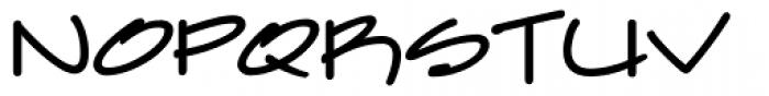 Farfel ICG Felt Tip Font LOWERCASE