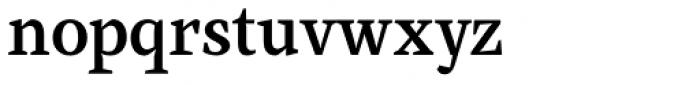 Farrerons Serif Demi Bold Font LOWERCASE